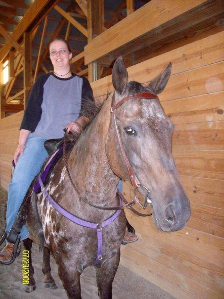Scribbles under saddle